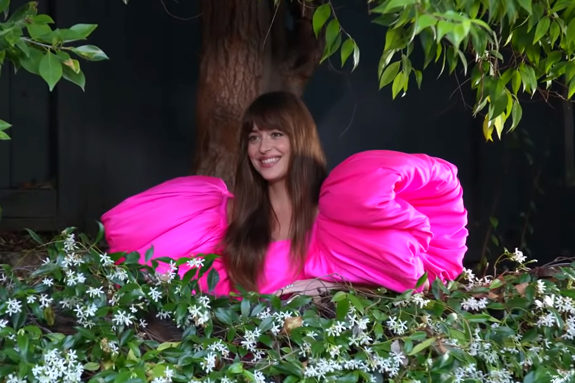 Jimmy Kimmel; Dakota Johnson