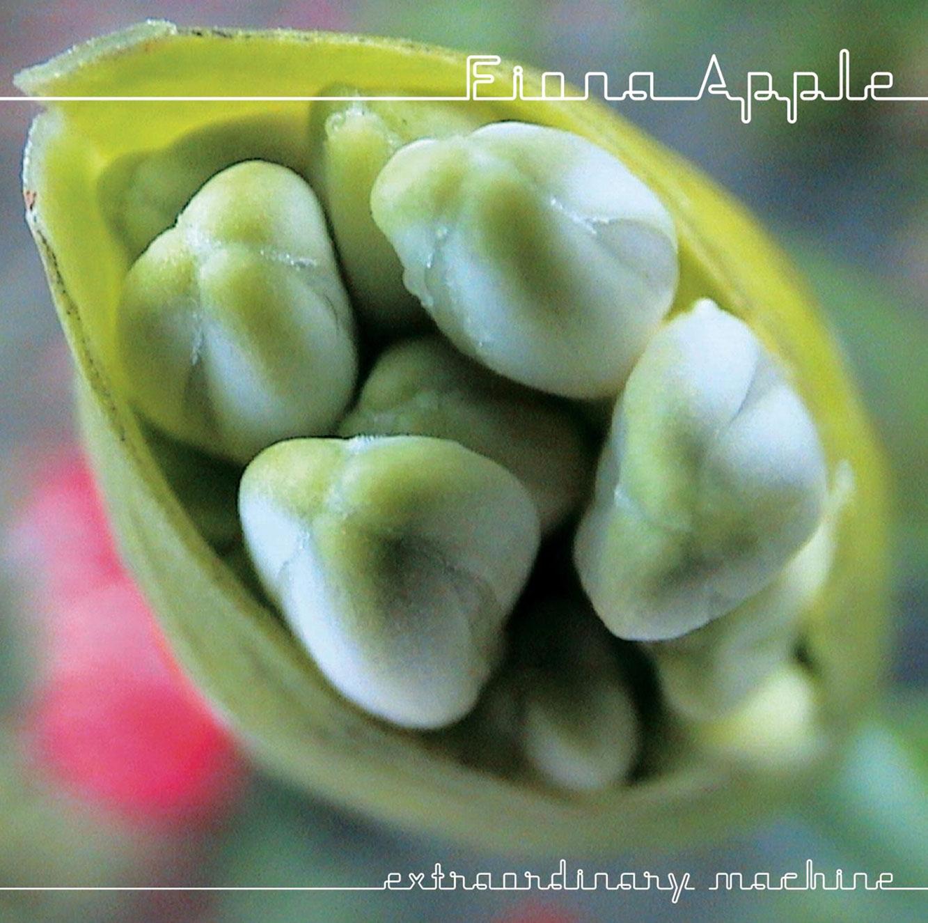 Extraordinary Machine by Fiona Apple