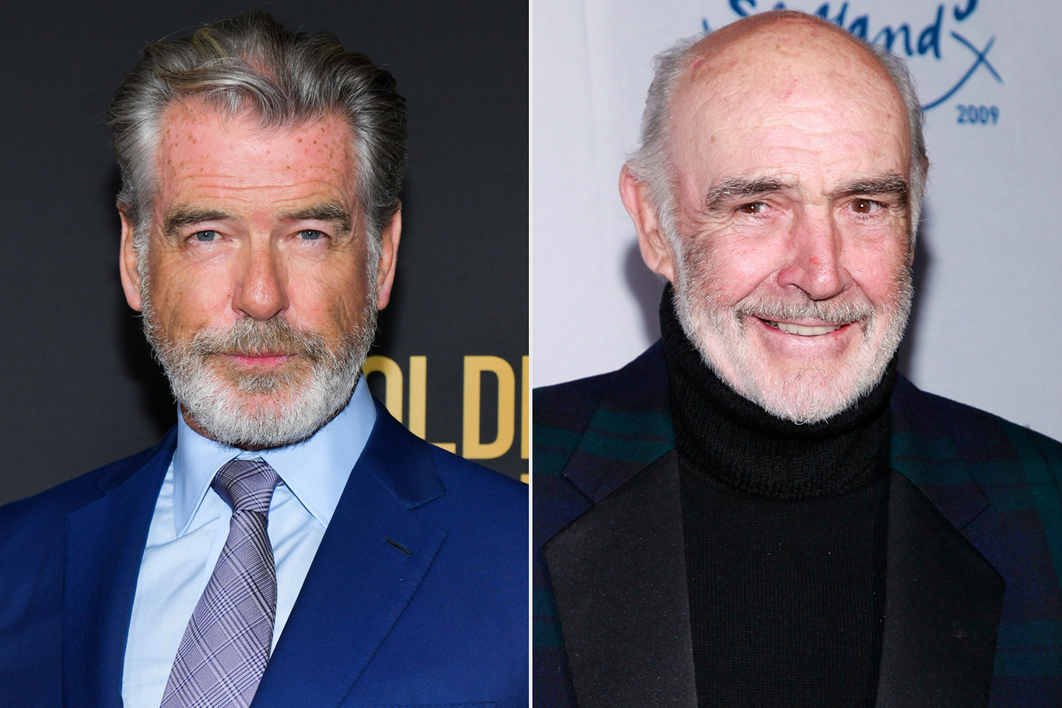 Pierce Brosnan, Sean Connery