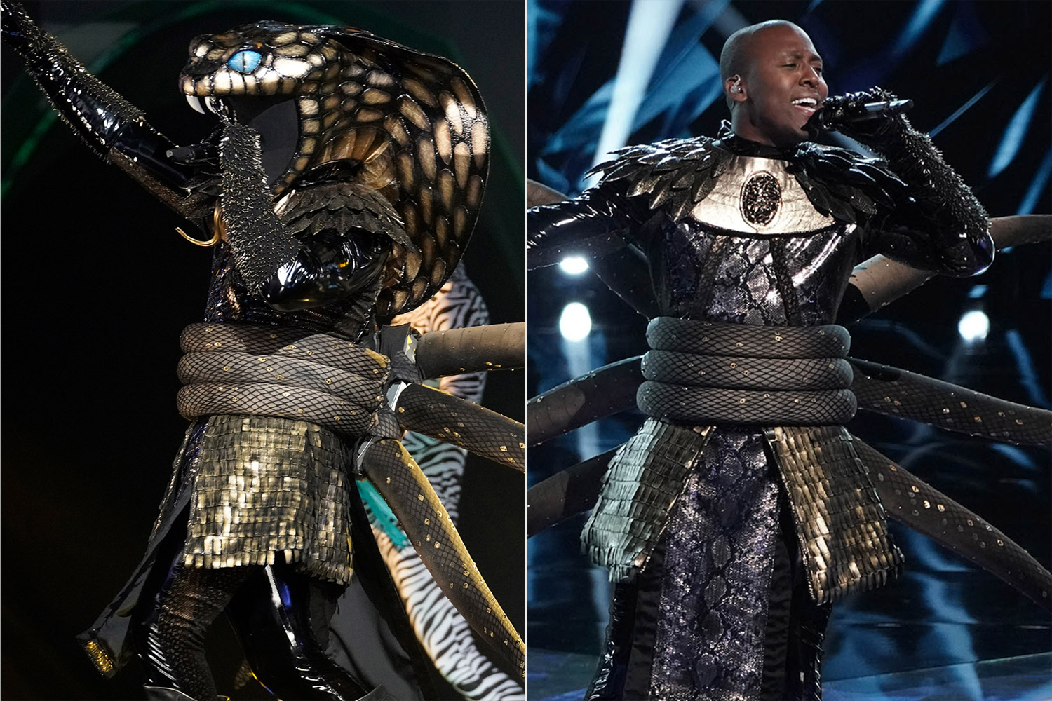 The Masked SInger Unveiled