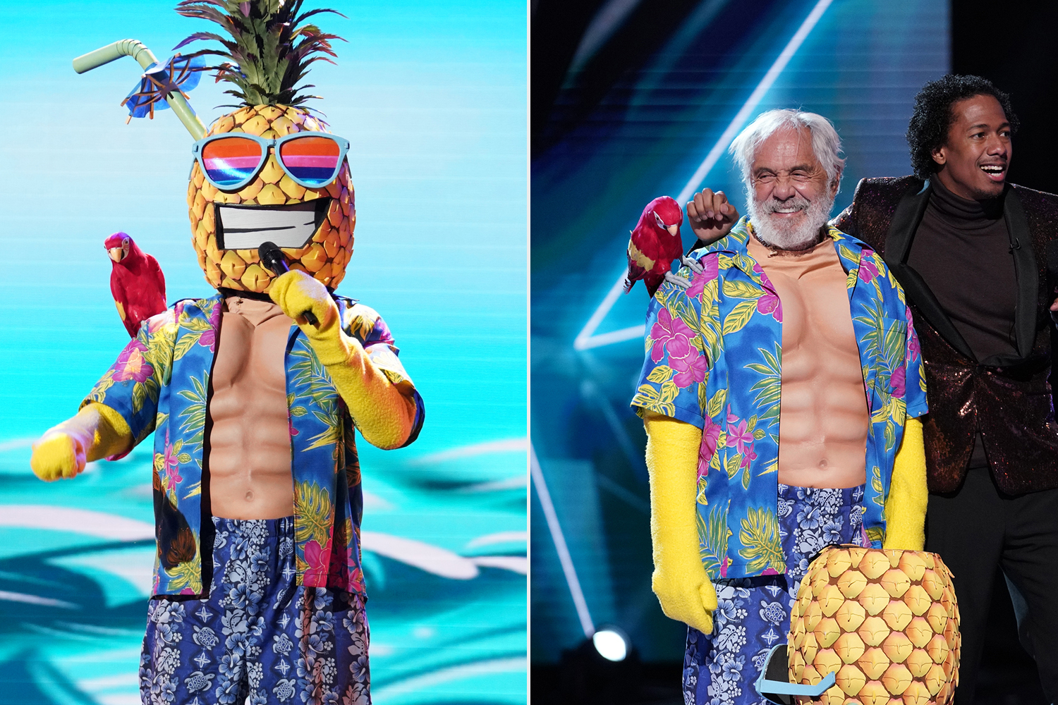 Pineapple; Tommy Chong