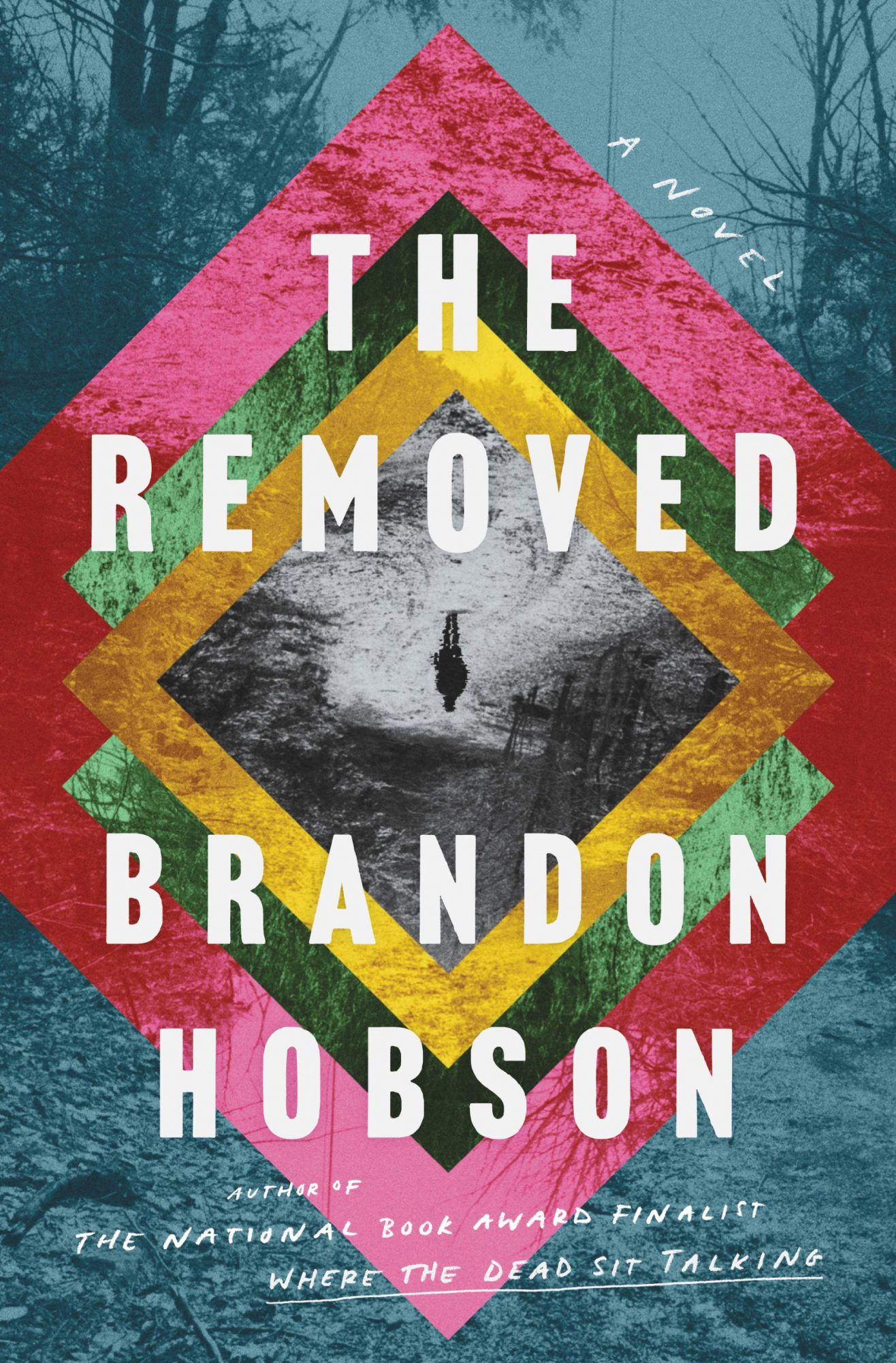 The Removed: A Novel by Brandon Hobson