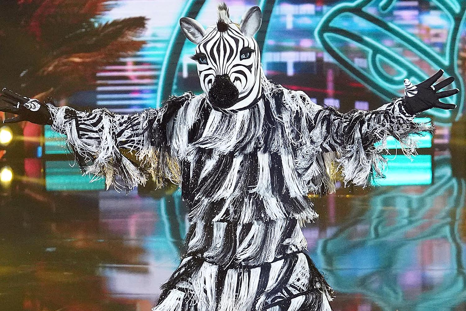 THE MASKED DANCER: Zebra