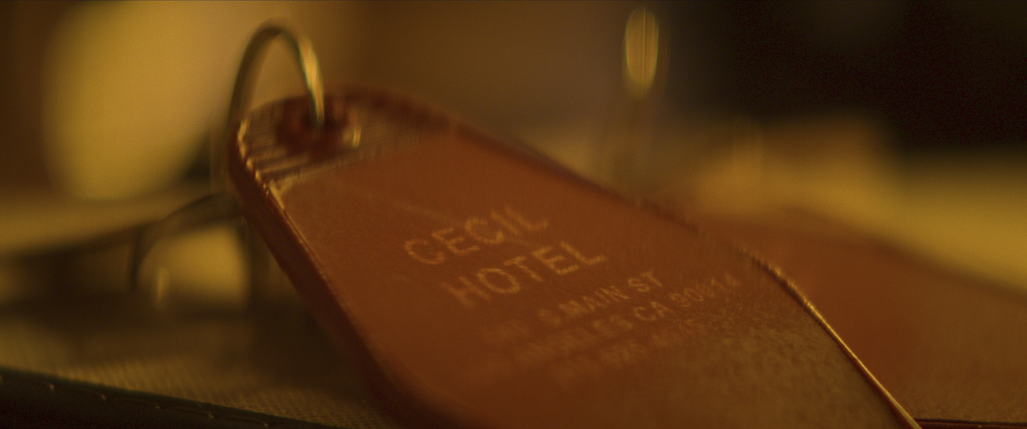 Crime Scene The Vanishing at the Cecil Hotel