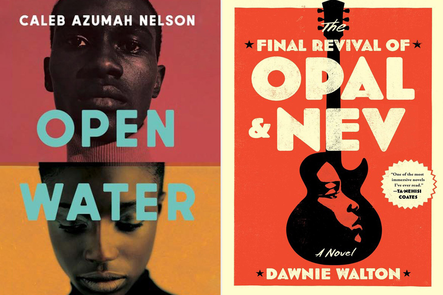 open water, the final revival of opal & Nev