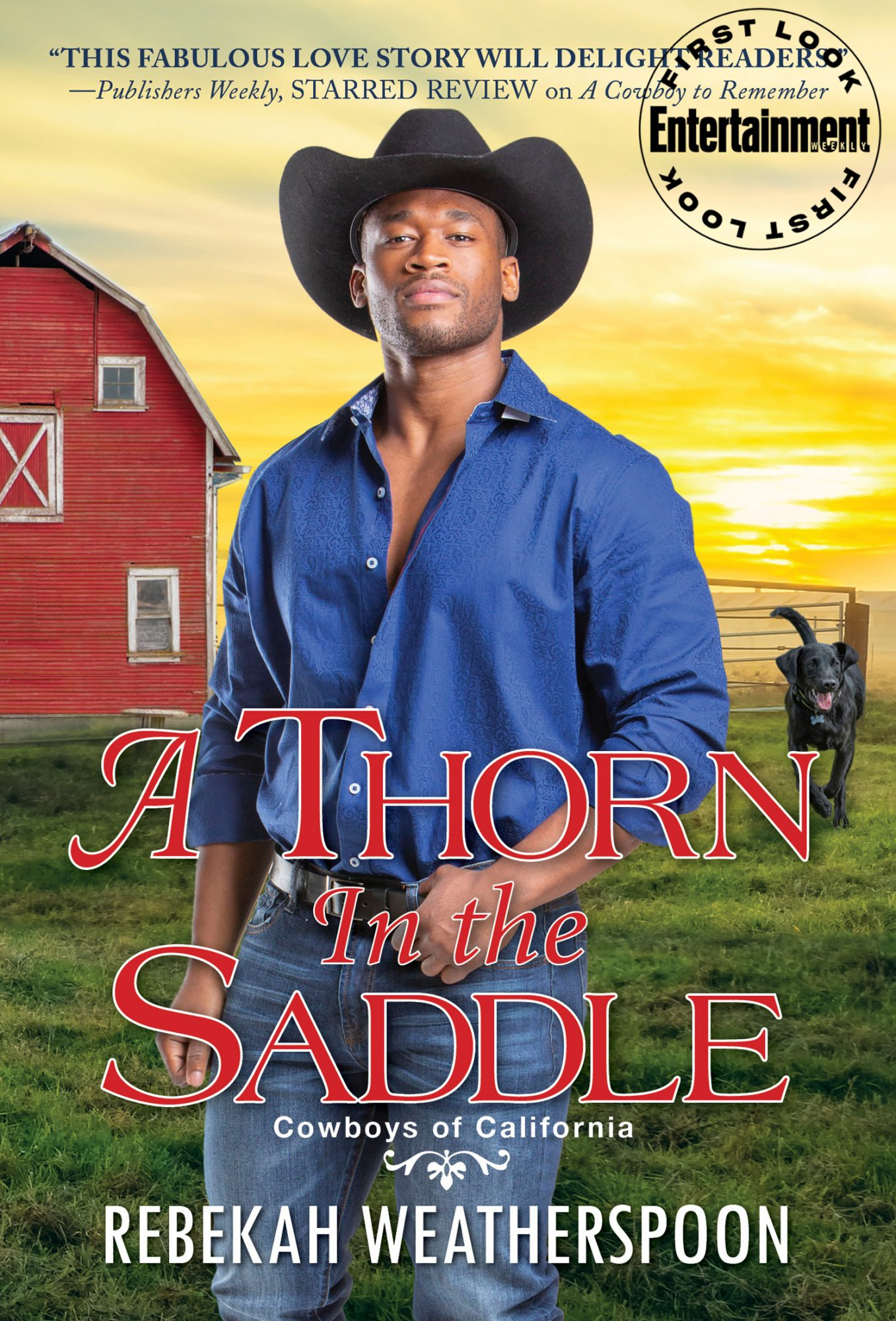 A Thorn in the Saddle Book by Rebekah Weatherspoon