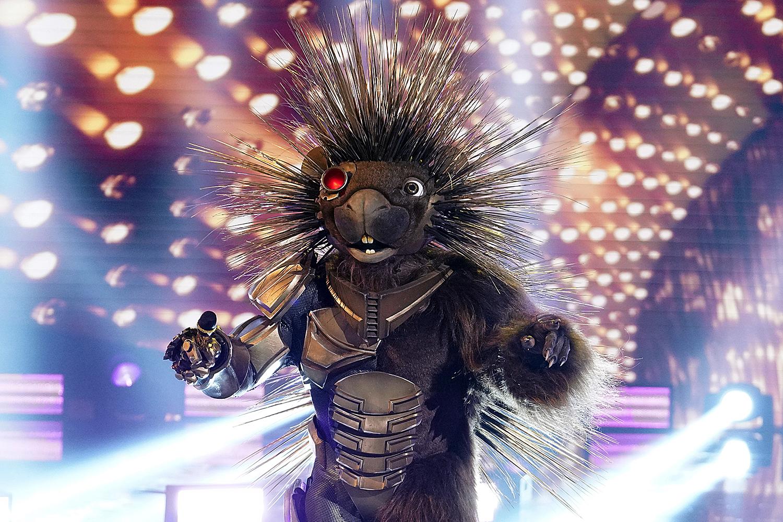 THE MASKED SINGER: Porcupine