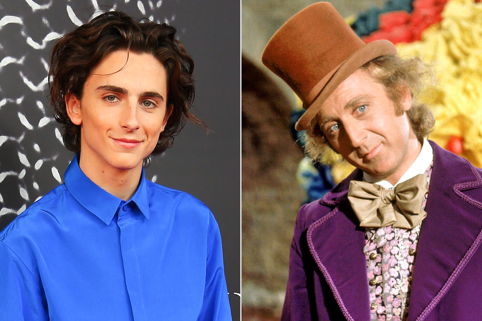 Timothee Chalamet WILLY WONKA AND THE CHOCOLATE FACTORY, Gene Wilder,