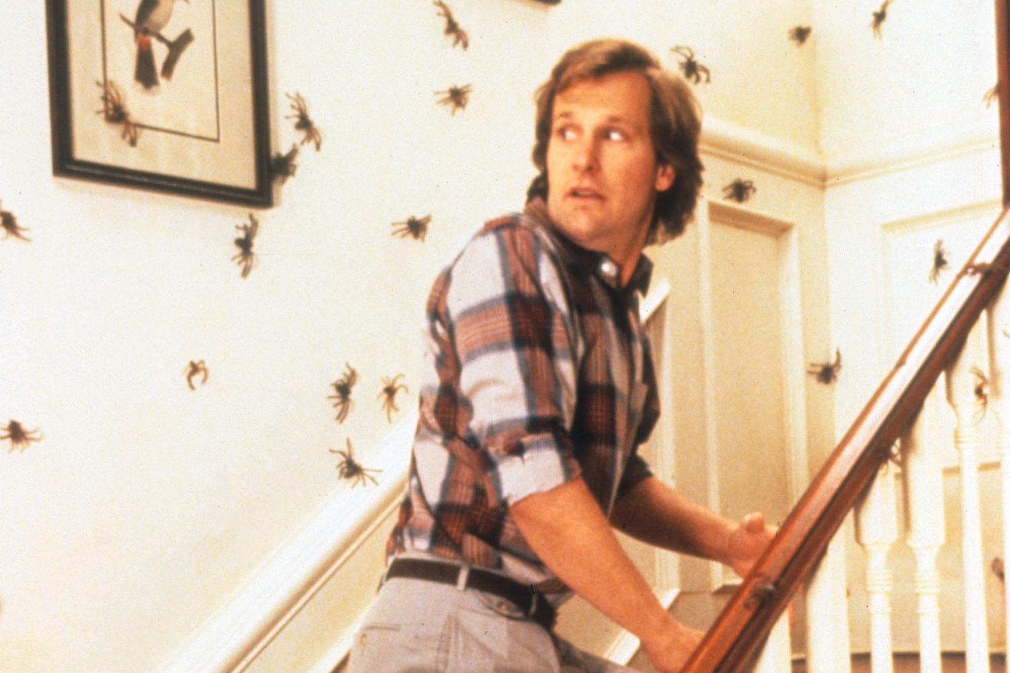 Bug Movies