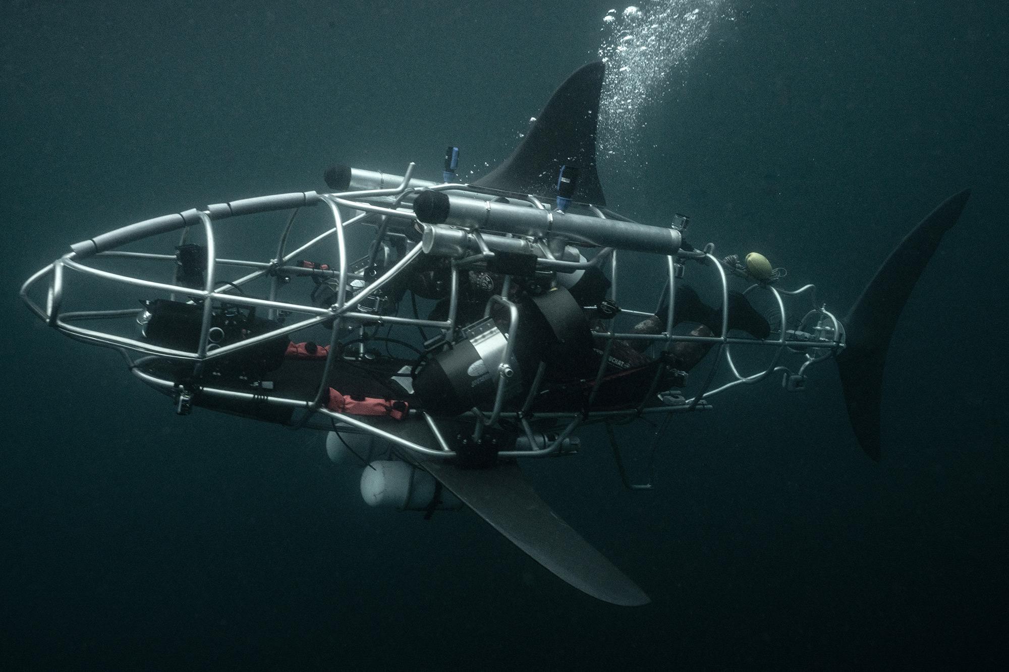 Shark Week 2021 MECHASHARK