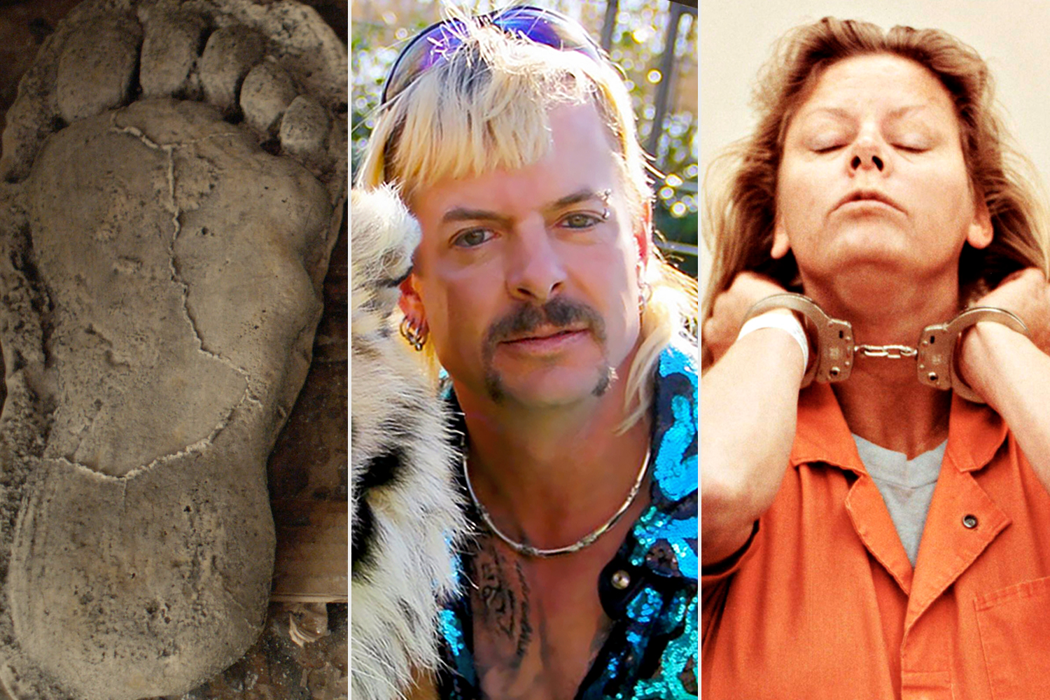 Sasquatch; Tiger King; AILEEN: LIFE AND DEATH OF A SERIAL KILLER