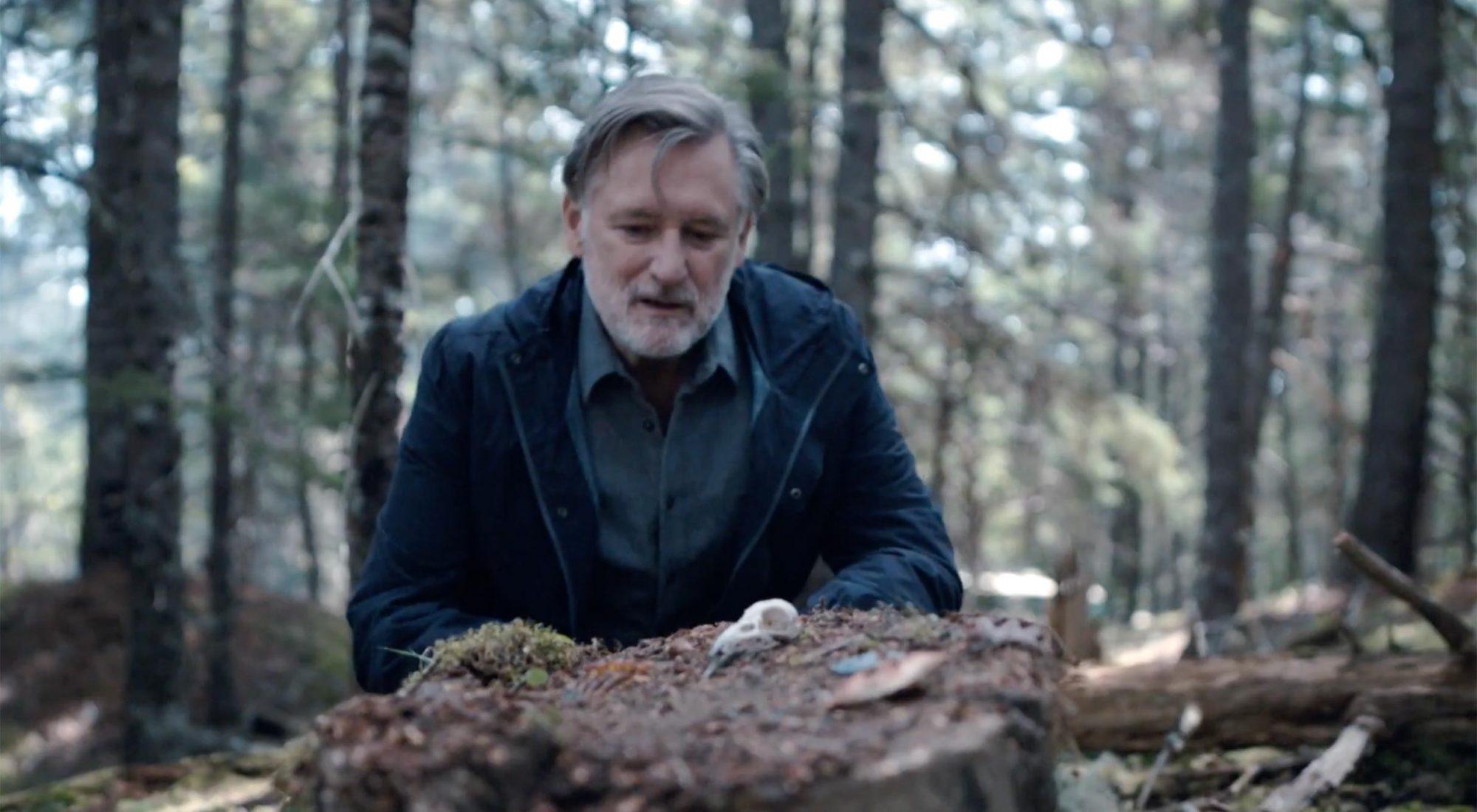 The Sinner season 4 trailer