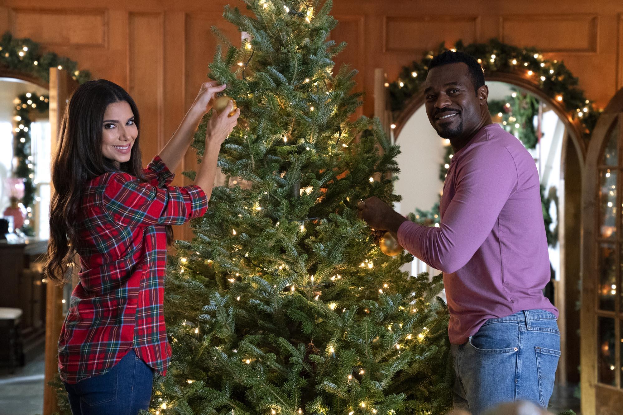 2021 Lifetime Christmas Movies An Ice Wine Christmas