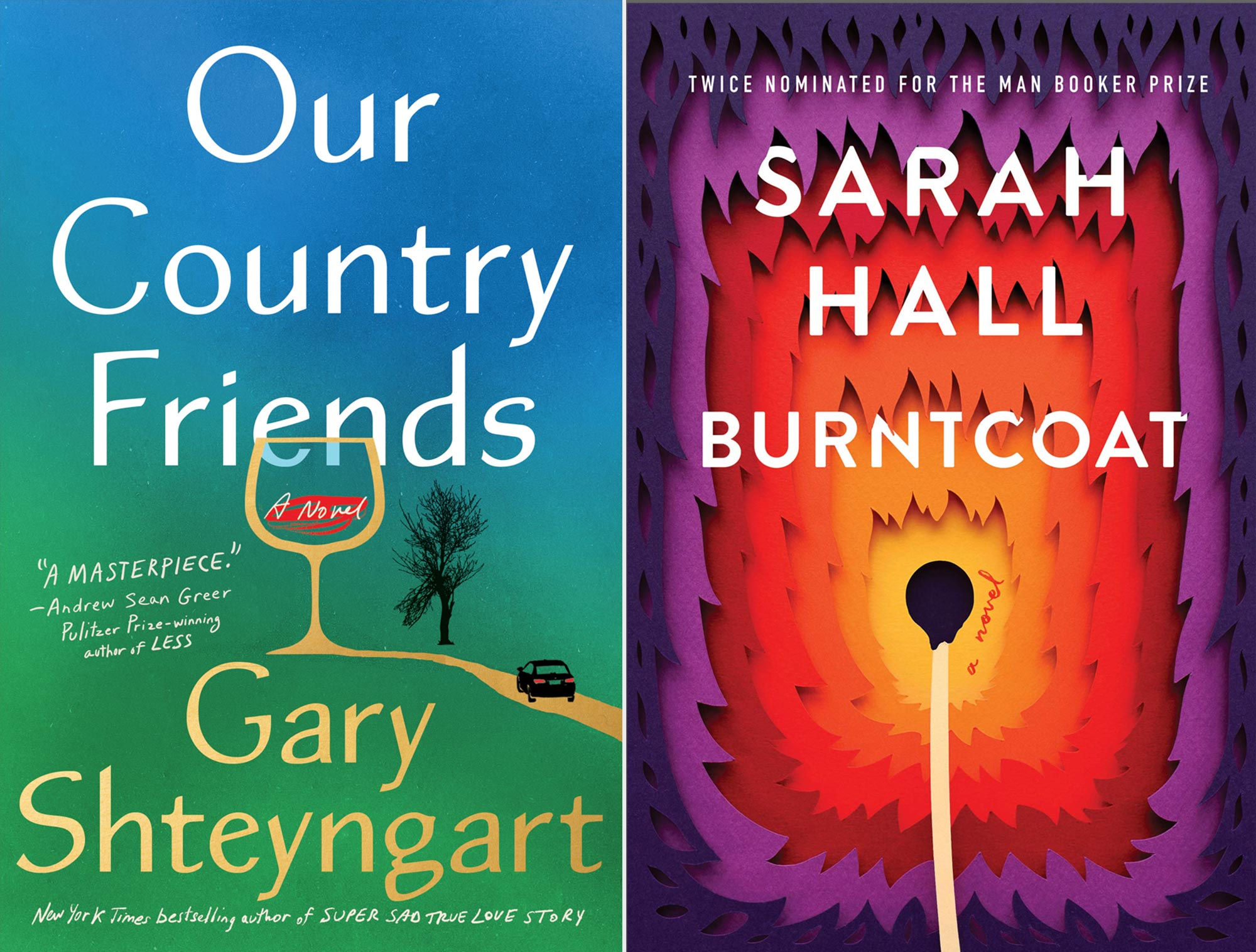 Our Country Friends by Gary Shteyngart; Burntcoat by Sarah Hall