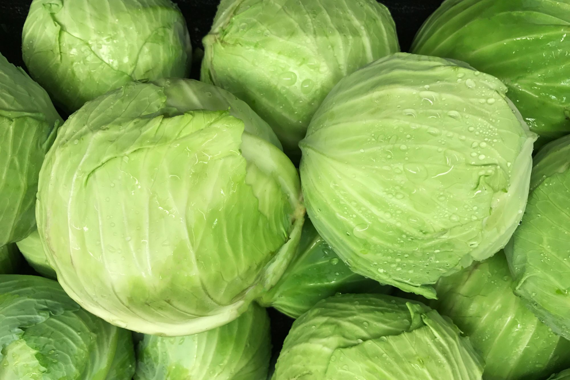 Whole heads of cabbage in a pile