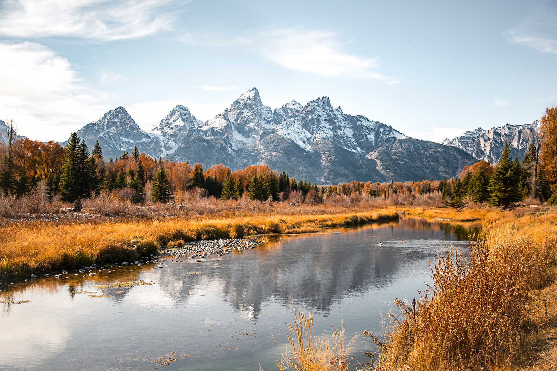 Teton mountain range reflection in the Snake River at Schwabacher's Landing in Grand Teton National Park, Wyoming. Fall scenic nature landscape with evergreen trees and a mountain water reflection.
