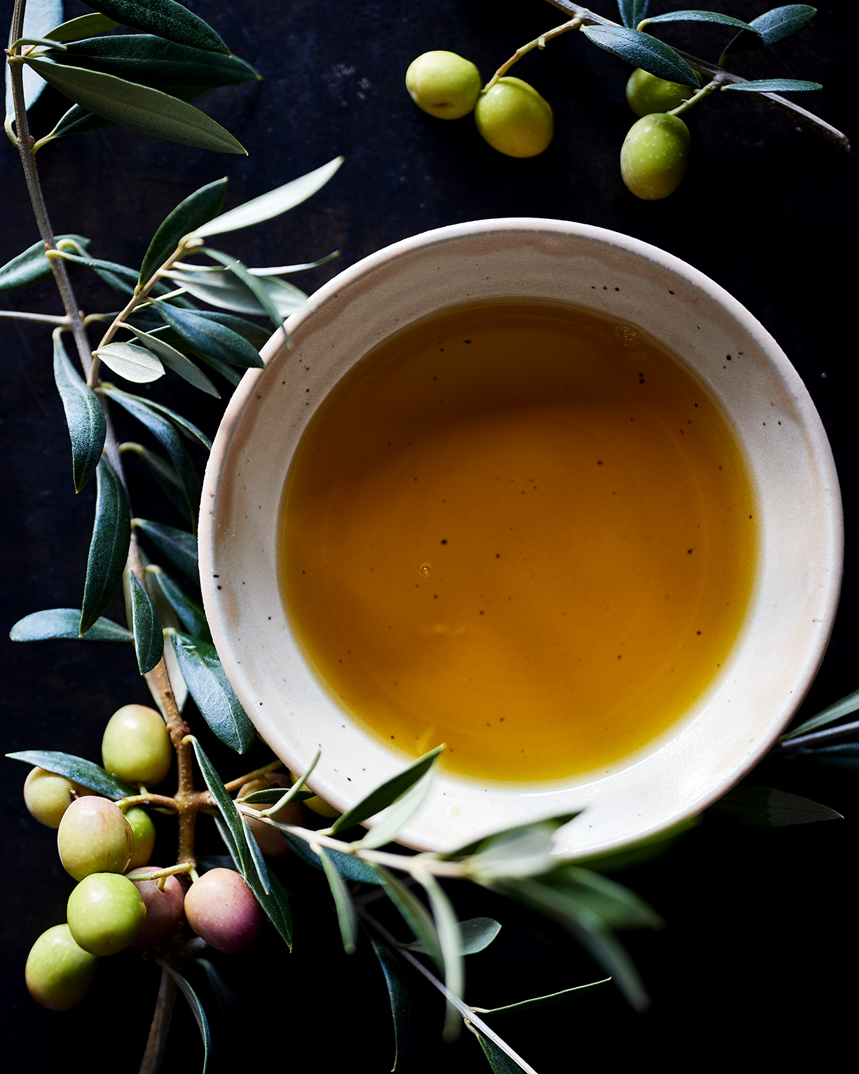 olive oil and olive branches