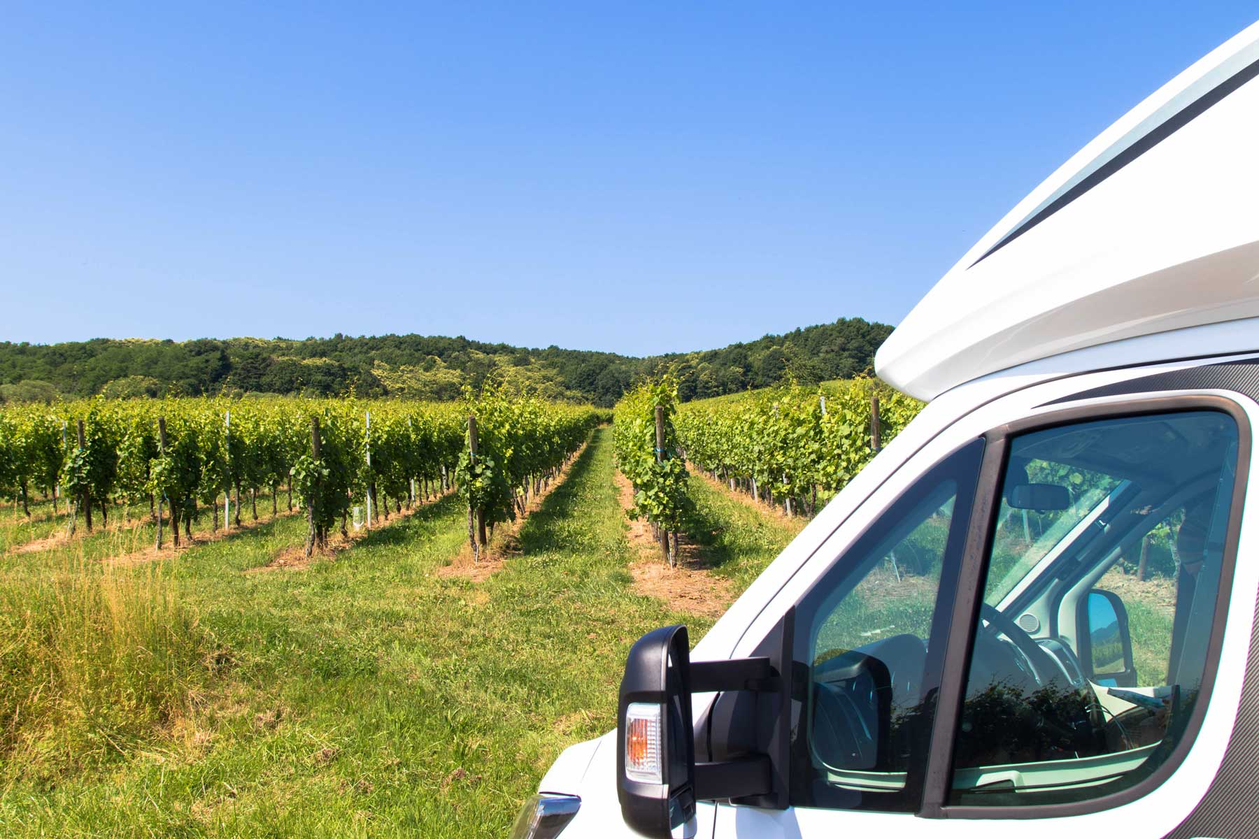 RV Camper parked in front of a vineyard on a sunny day