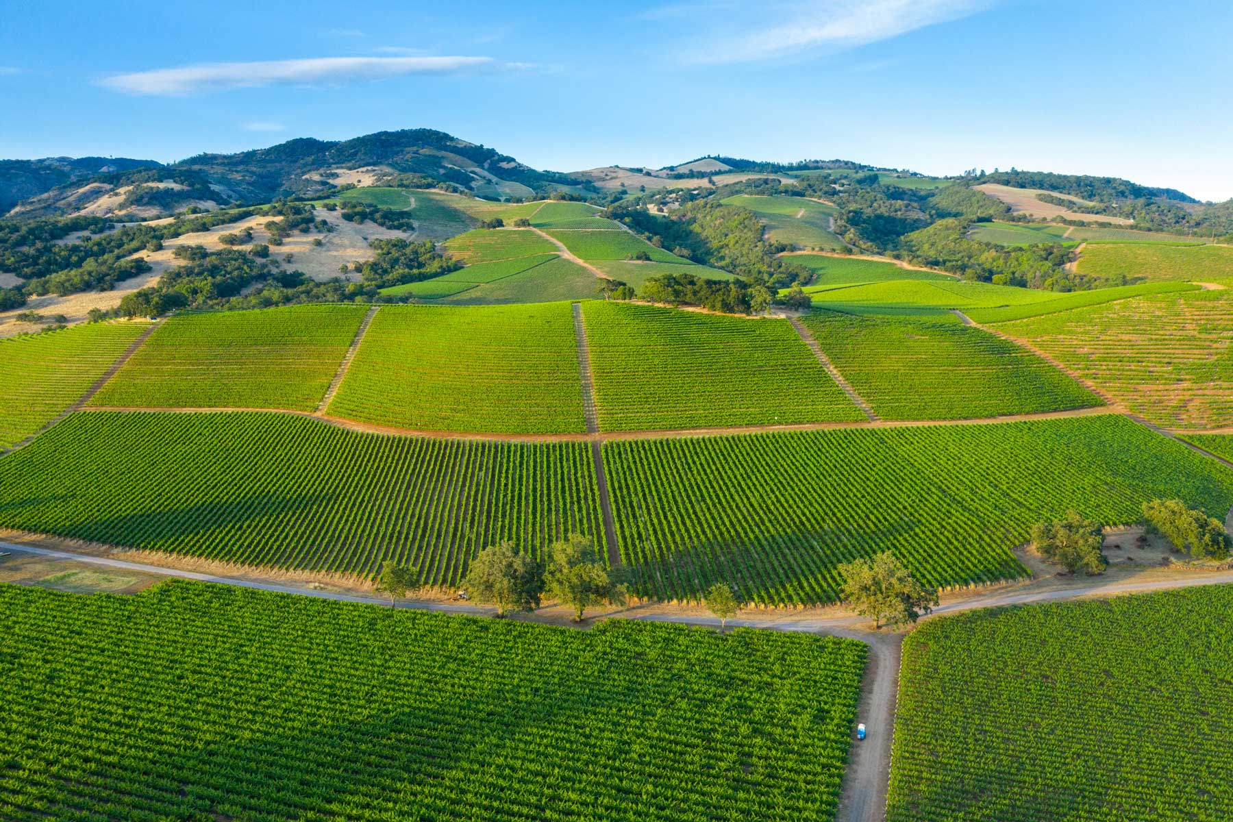 Aerial view of Sonoma Country California on a bright sunny day