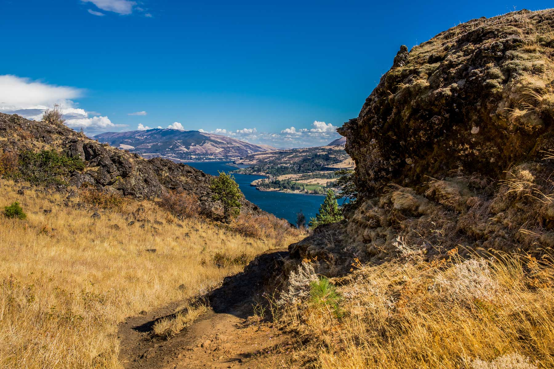 Scenic view of landscape against blue sky,White Salmon,Washington