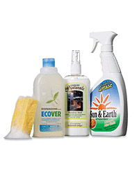 images-sys-fw200706_greencleaners.jpg