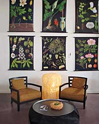 images-sys-sonomastyle-200802-a.jpg