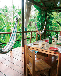 images-sys-200808-a-treehouse-panama.jpg