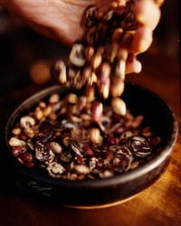 images-sys-200811-a-magic-beans.jpg