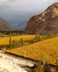 images-sys-200904-a-wine-country-chile.jpg