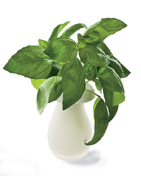 images-sys-200905-a-double-duty-vases.jpg