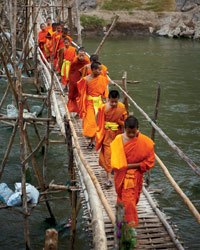 Saffron-Clad Monks
