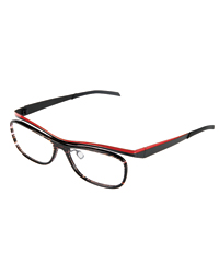 Carla Hall's glasses