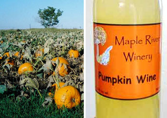 Pumpkin Wine
