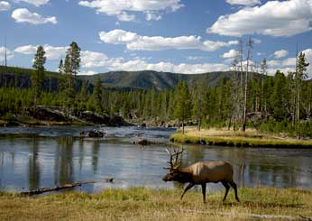America's National Parks: The Insider's Travel Guide