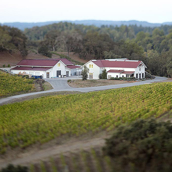 Sonoma County Wineries to Visit: Copain