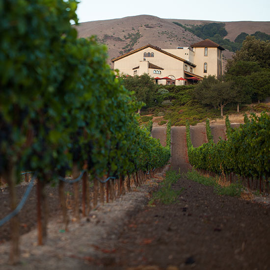 Sonoma County Wineries to Visit: Gloria Ferrer