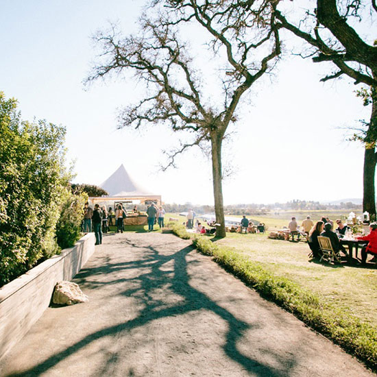 Sonoma County Wineries to Visit: Scribe