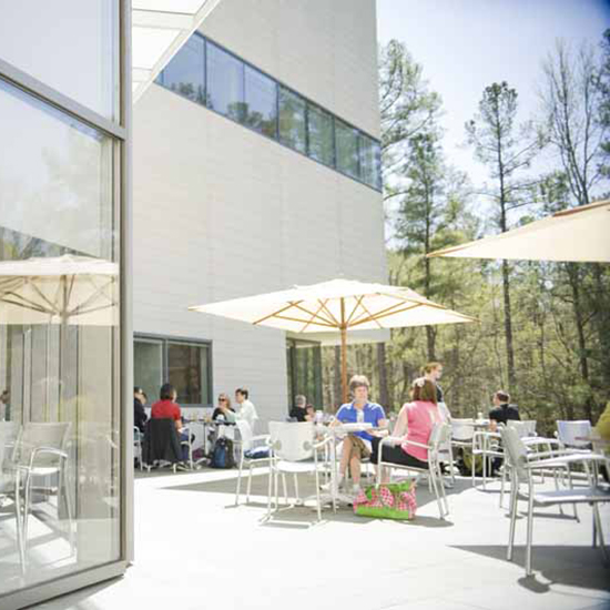 Best Museum Restaurants in the U.S.:Nasher Museum Café, The Nasher Museum of Art at Duke University