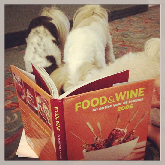 Food & Wine Pets: dogs