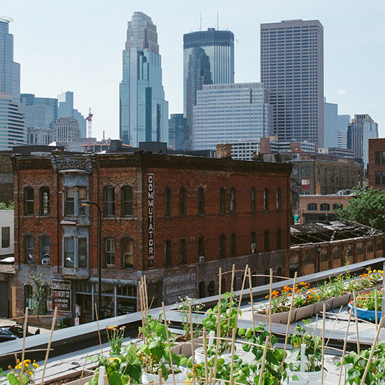 Minneapolis Photo Tour: Rooftop Garden Garden