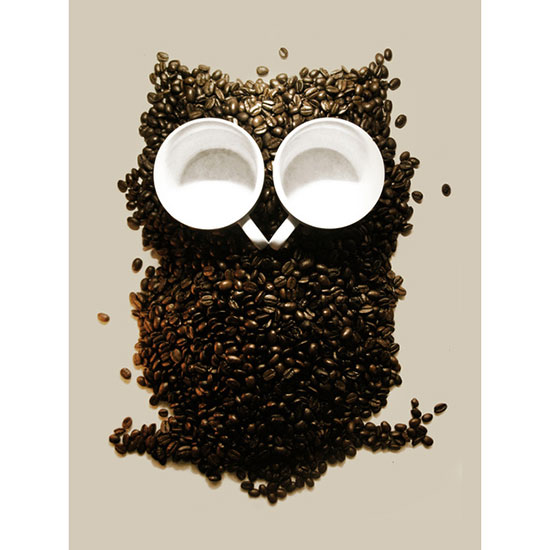 Kitchen Art: Hoot! Night Owl! Made from Coffee Beans