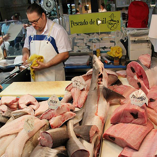 Chef Dream Trip to Southern Spain: Fish market