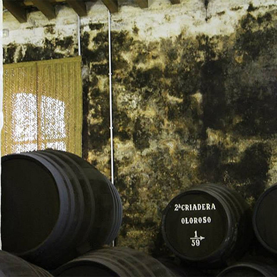 Chef Dream Trip to Southern Spain: Cellar
