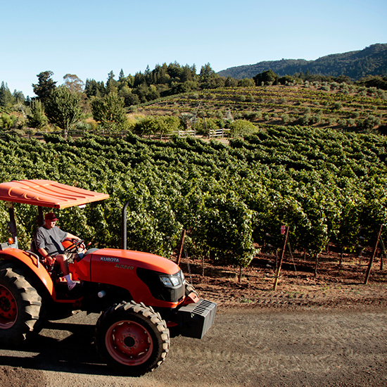 Sonoma County Wineries to Visit: Benziger