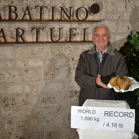 original-201412-HD-sabatino-largest-white-truffle.jpg