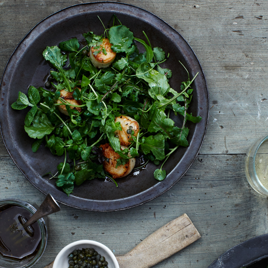 Grilled Scallops over Mixed-Green and Herb Salad