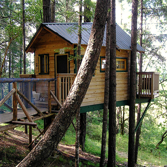 Vertical Horizons Treehouse Paradise, Oregon