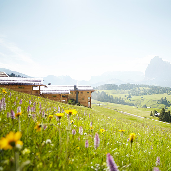 The Dolomites: Adler Mountain Lodge