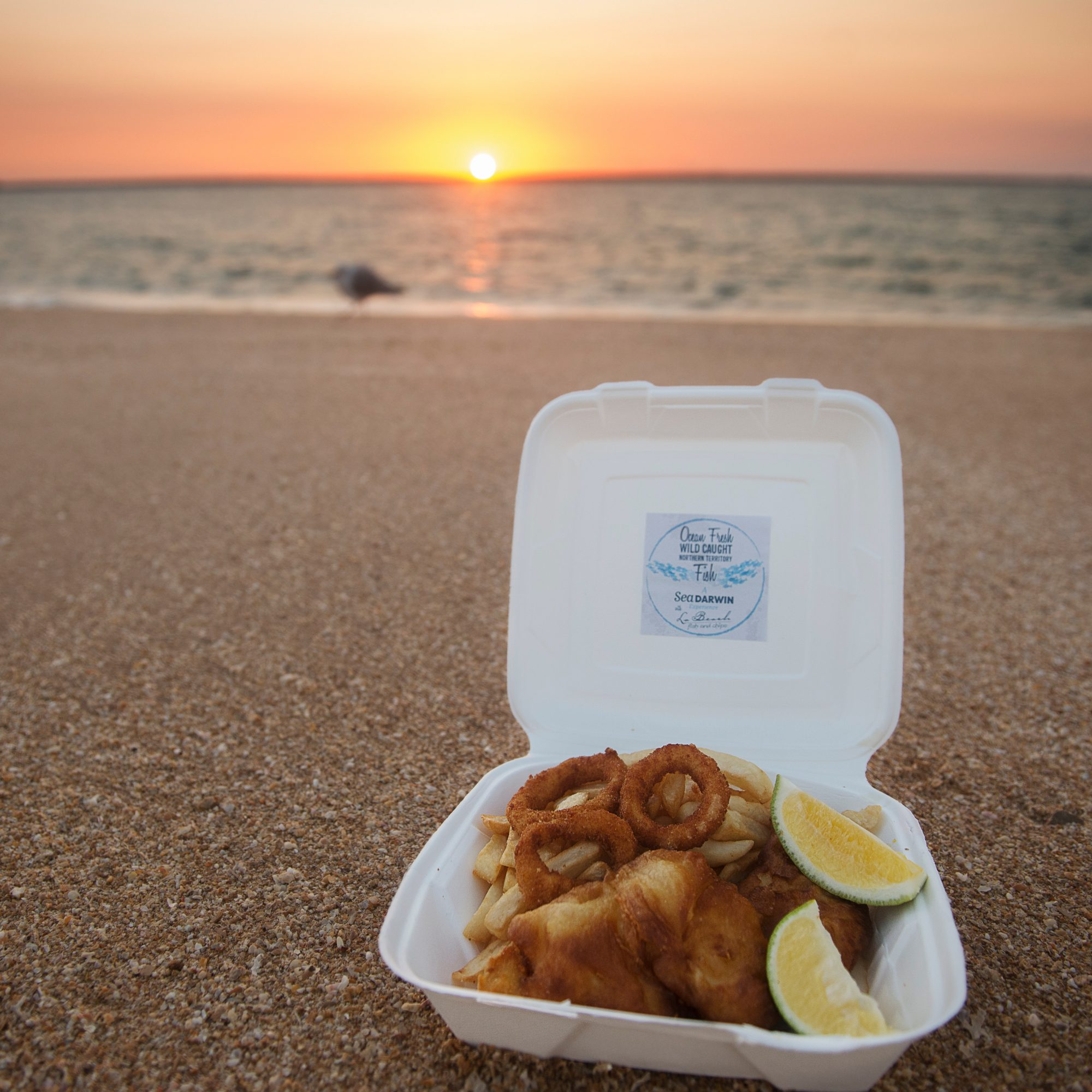 Sunset Fish and Chips Tour
