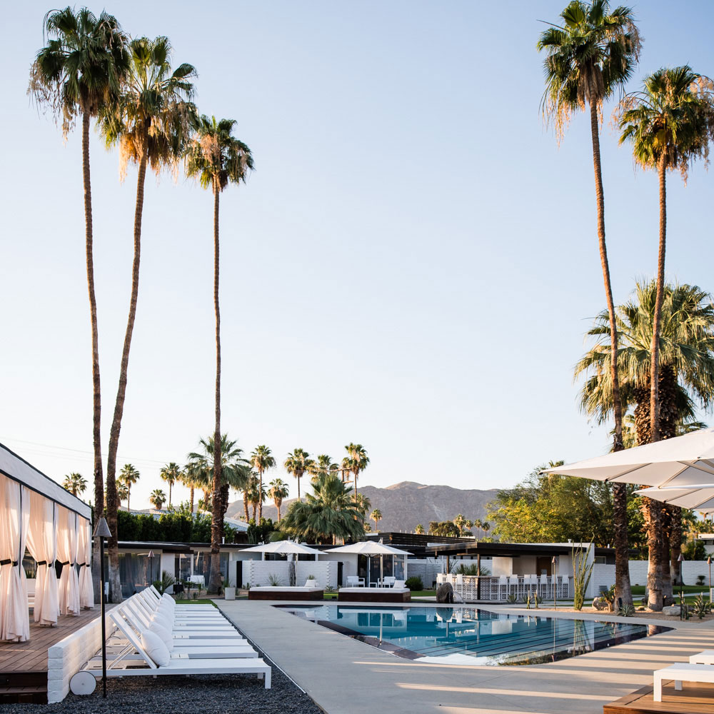Poolside with palm trees at the Palm Spring hotel L'Horizon.
